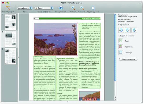 В finereader в редактор word вставка производится из буфера обмена соответствующей командой из меню или просто